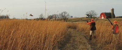 ts Hilltop Meadows.jpg