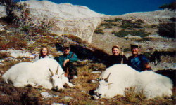 db_2-Mountian-Goats3